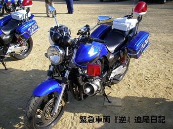saitama530_12011002.JPG