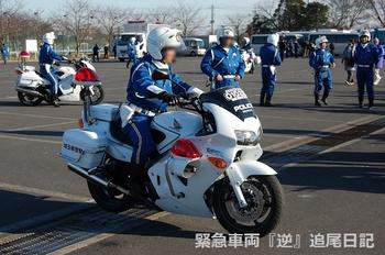 saitama530_12012208.JPG