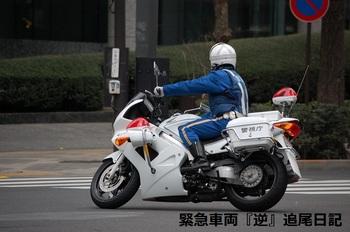 saitama530_12022701.JPG