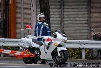 saitama530_12022703.JPG