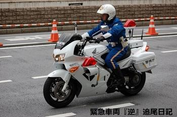 saitama530_12022710.JPG