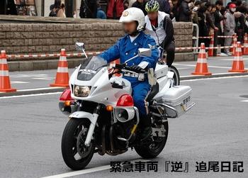 saitama530_12022711.JPG