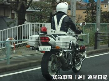 saitama530_12031202.JPG