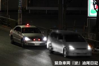 saitama530_12031804.JPG