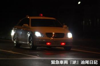 saitama530_12033101.JPG