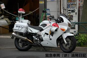saitama530_12062401.JPG