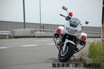 saitama530_12063002.JPG
