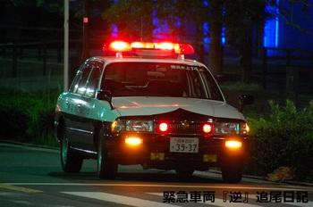 saitama530_12071604.JPG