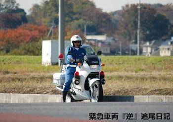 saitama530_12111901.JPG