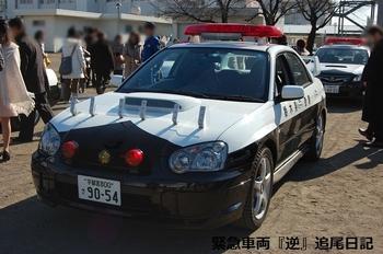 saitama530_12122108.JPG