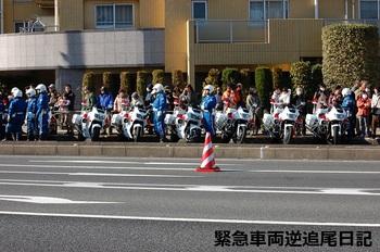 saitama530_13010601.JPG