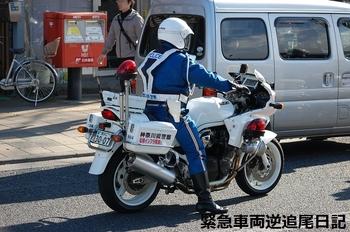 saitama530_13010606.JPG