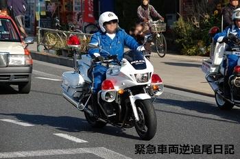 saitama530_13010611.JPG