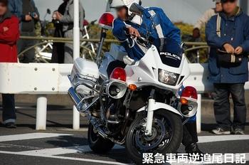 saitama530_13010614.JPG