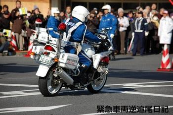 saitama530_13010616.JPG