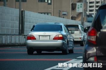saitama530_13011101.JPG