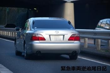 saitama530_13011102.JPG