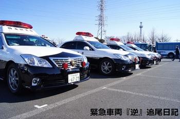 saitama530_13012103.JPG