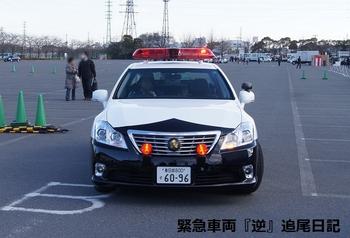 saitama530_13012116.JPG