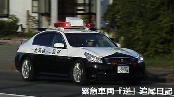 saitama530_13012701.jpg