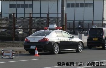 saitama530_13012702.jpg
