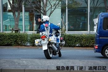 saitama530_13022702.JPG