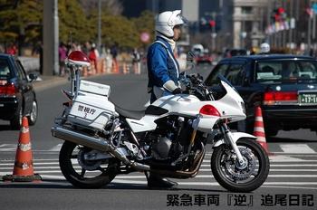 saitama530_13022706.JPG