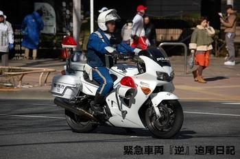 saitama530_13022713.JPG