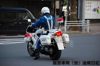 saitama530_13022715.JPG