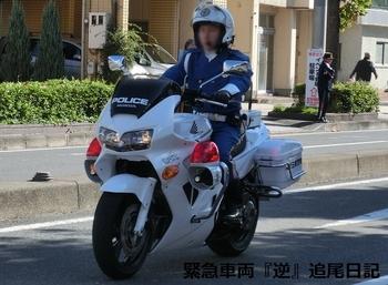 saitama530_VFR800gin.JPG