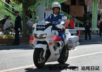 saitama530_VFR800gingard.JPG