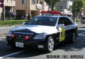 saitama530_senkou.JPG